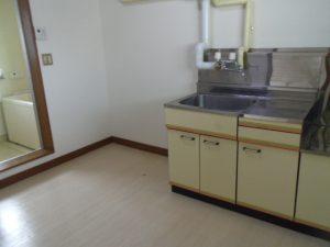 IMGP6482